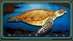 SEA TURTLE 29 x 12 x 5 inch relief wood carving by WOODNARTS, $125.00