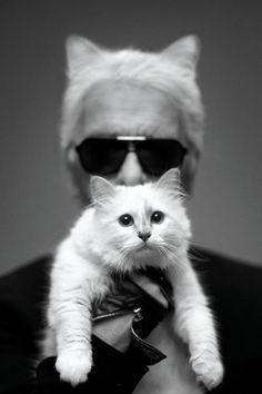 Karl Lagerfeld + Choupette