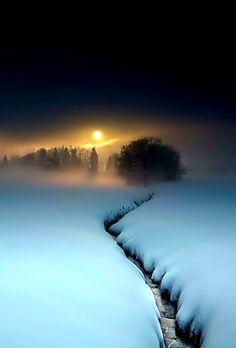 Winter Sunset, Winter Scenery, Moonlight Painting, Dark Tree, Winter Wallpaper, Natural Scenery, Winter Beauty, Winter Wonder, Landscape Photography
