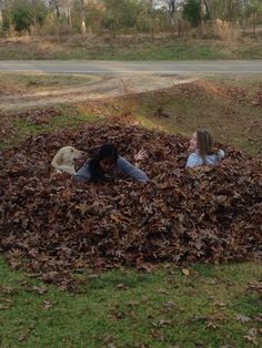 Have fun with your friends! Make a giant leaf pile and jump in it!!