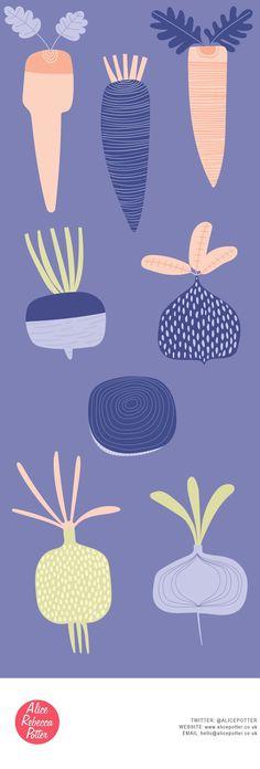 Root vegetable, food illustration by Alice Potter Illustration