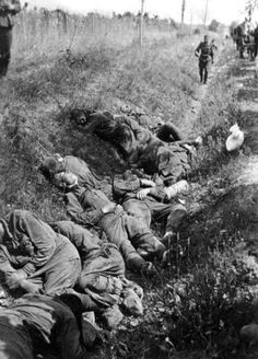 Russian POWs shot by the Germans lie in a ditch on the side of the road, summer 1941.