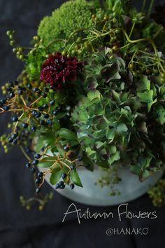 Autumn flowers @ HANAKO|Enjoy the Little Things