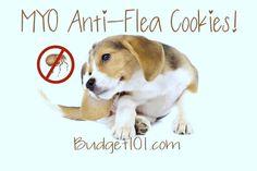 Homemade Anti-Flea cookies