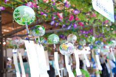 川崎大師の風鈴市 furin is japanese wind chime. FURIN festival is held at Kawasaki Daishi in July every year. You can see thousands of furins in Kawasaki Daishi(Buddhist temple). Also you can buy one.