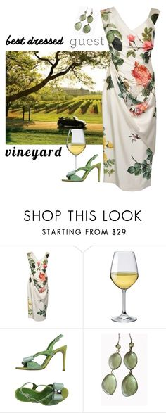 """The Vineyard Wedding"" by patricia-dimmick ❤ liked on Polyvore featuring Bormioli Rocco, Giancarlo Paoli, Blue Candy Jewelry, napa, winerywedding, bestdressedguest and vineyardwedding"