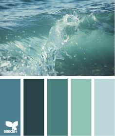 "Next color palette for my house. ""Jersey Shore"" colors!"