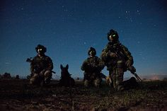 Rangers with Headquarters and Headquarters Company, 3rd Battalion, 75th Ranger Regiment pictured with a military working dog while on operation in Afghanistan, 2012. Military working dogs can be used to search for explosives, drugs, weapons and hidden insurgents.