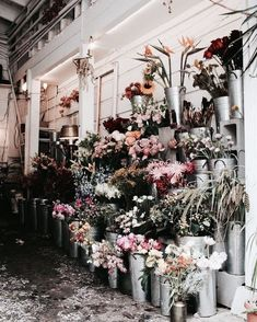 Image shared by Michel 🌿. Find images and videos about flowers on We Heart It - the app to get lost in what you love. My Flower, Flower Power, Beautiful Flowers, San Myshuno, Bloom Where Youre Planted, No Rain, Flower Aesthetic, Flower Market, Flower Shops