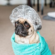 I'm ready for a spa day ;-)