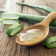Aloe vera: come e perchè utilizzarla