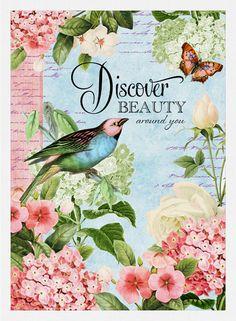 Bird Garden - Discover Beauty / Joy Hall