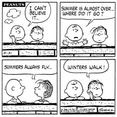 summer flys by Charlie Brown ✯Snoopy