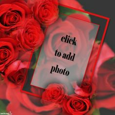 red roses photo frame from imikimi.com. It's a free photo montage site.