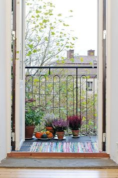 Are you ready for fall? How hard can it be? A few pots of heather, ornamental pumpkin and opened doors too the balcony.
