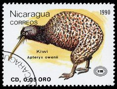 Kiwi, Nicaragua, 1990. Of course this is not a New Zealand stamp, but the bird is New Zealand's national symbol.