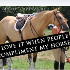 Quickest way to friendship with me is to say something nice about my horse :) had several strangers at last show say quigley was the prettiest horse they'd ever seen!!