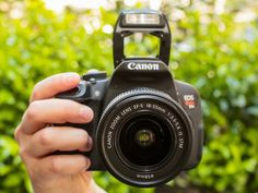 Having trouble choosing among Canon's dSLRs? This guide will help you get started.