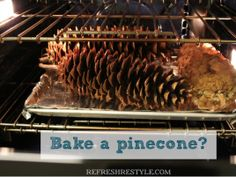 Get rid of insects in your pinecones before you decorate with them!  Bake your pinecones to kill insects and stop the sap flow.Bake at 250 ° on a foiled lined baking sheet. Let them cool before you decorate.