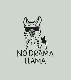Nach den Eulen und Einhörnern sind jetzt die Lamas im #Marketing angekommen. Was kommt als nächstes? Vielleicht Frosch oder Eichhörnchen? www.lka-agentur.de
