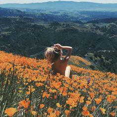 ☾ ☆ Dreamy memories from poppy wonderland on Grass Mountain in Los Olivos, California.