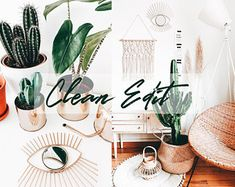 Professional Mobile Lightroom Presets by DolceVitaPresets on Etsy Lightroom Presets, Cactus Plants, Trending Outfits, Unique Jewelry, Handmade Gifts, Etsy, Kid Craft Gifts, Cactus, Hand Made Gifts
