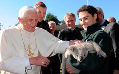 Pope Benedict XVI pet a koala. (L'Osservatore Romano)