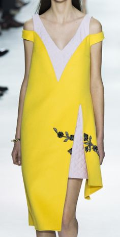 Christian Dior Ready To Wear Autumn 2014
