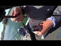 Learn How To Back-Reel And Catch More Fish - YouTube