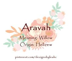 Baby Girl Name: Aravah. Meaning: Willow. Baby Girl Name: Aravah. Meaning: Willow. Baby Girl Names Unique, Unique Names, Cool Names, Hebrew Girl Names, Biblical Names, Female Character Names, Female Names, Fantasy Names, Baby Name List