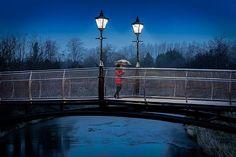 Bridge at Dawn by Tony Moore