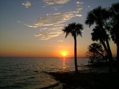 this is where I'll hopefully be  visiting at the end of September!!!  ♥Port Charlotte, FL