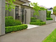 Goom Clarkson Residence - love the hedging and layering effect with the centre trees.
