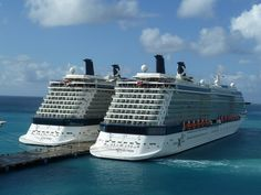 2 Celebrities by Cruise Dog, via Flickr