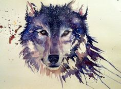 Snow wolf by sarahstokes.deviantart.com on @DeviantArt