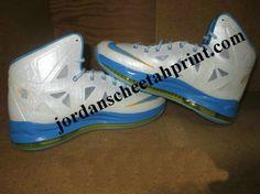 Nike LeBron X Swin Cash Home