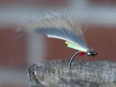Bling Zkinny with gills - A version with sides and gills will look like a small fry. Fly Tying Patterns, My Favorite Image, Kind Words, Fly Fishing, The Good Place, Places To Go, Bling, Ties, Pictures