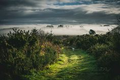 Bretagne - Monts d'Arrée Walk The Earth, Brittany, France, Country Roads, Photos, Sunset, Nature, Travel, Outdoor