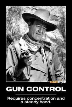 """Gun control - now thats gun control I can support! These people took an oath """"To Protect and Defend our Constitutional Rights"""" Every member should be removed from their elected position, and charged with treason. The people of this great country are tired of this ongoing attempt to destroy our Constitution It is time to call them out, and remove them from our govt. These people are the reason we have the 2nd Amendment !"""