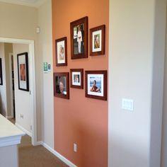 Paint & Pictures