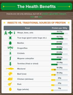 Eating Insects: A Pr