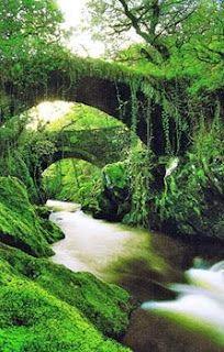 Enchanting Snowdonia …Gwreiddiau Cardiff, Places To Travel, Places To See, Wales Snowdonia, Places Around The World, Around The Worlds, England, British Isles, Great Britain