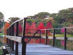 Lago São Bernardo, São Francisco de Paula, RS