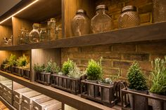 Restaurant in Camden, London. We kept the decor simple, exposed brick wall, solid walnut, shelving adorned with maison jars and a touch of nature. #interior #design #restaurant #london #interiordesign #camden #merakidesign #maisonjars #crates