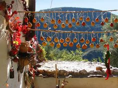 Los Olivillos Organic Smallholding, Andalucia, Spain. A tranquil smallholding in a beautiful rural valley above Ferreirola, a Berber village in the Alpujarra http://www.organicholidays.com/at/2332.htm