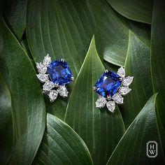 Like stars in a night sky, brilliant #diamonds illuminate deep blue sapphire…