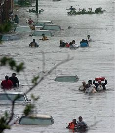 Body Dead Hurricane Katrina - Bing Images | Katrina-You Bitch ...