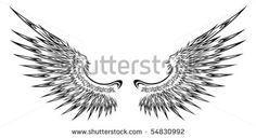 Detailed wing illustration