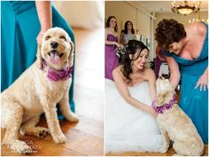 Bride with Mom and Dog - Berkshire, MA Wedding - Tricia McCormack Photography