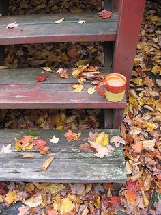 Warm Drink, Cool Day by Ann Douglas, via Flickr